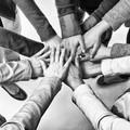 Cooperativa Trifoglio sospende i servizi sociali