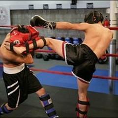 Il Palasport diventa un ring con l' A.S.D.  Kick Boxing Andriese