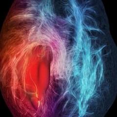 Le cellule che nutrono i tumori