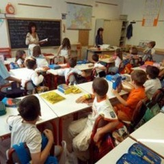 """La scuola   """"Imbriani """" presenta l'elaborato vincente al concorso  """"Regoliamoci """""""