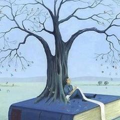 Mai più senza libri