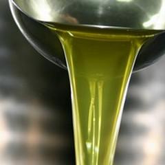 Crollo del -10,4% delle esportazioni di olio extra vergine di Puglia