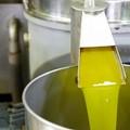 Coldiretti Puglia, magazzini pieni di olio straniero (+13%)