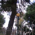 Orario continuato per 7 lampioni della villa comunale