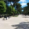 I parchi urbani di Andria invasi da bici elettriche e da incivili padroni degli amici a quattrozampe