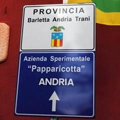 L'Osservatorio Faunistico di Foggia adotta 15 daini di «Papparicotta»