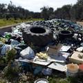 """Ambiente:  """"Ad Andria un impianto di compostaggio in contrada Torre di Guardia? """""""