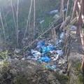 Cumuli di rifiuti nel canale Ciappetta-Camaggio in Contrada Martinelli