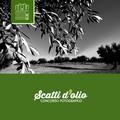 """""""Sogni nelle notti di mezza estate """", parte la XVI edizione a cura della Strada dell'Olio Extravergine Castel del Monte"""