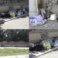 A Sant'Angelo dei Ricchi rifiuti abbandonati da 75 giorni