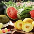 Puglia: preoccupa l'andamento dei prezzi di frutta e verdura