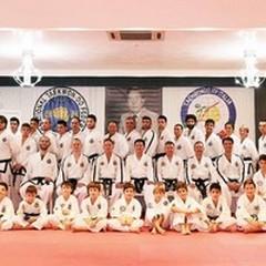 Taekwondo, grande participazione al seminario con Hwang