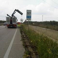 """Nuove barriere di sicurezza sulla  """"Andria-Bisceglie """": un bando"""