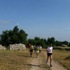 Ecotrail, la prima gara podistica nel Parco dell'Alta Murgia