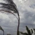 Situazione meteo in Puglia, da stanotte arriva il vento di burrasca
