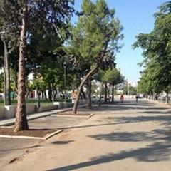 Ambulanti della Domenica: dal viale della passeggiata a via Walter Chiari
