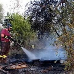 Parco alta Murgia: divieto di bruciatura stoppie e residui vegetali