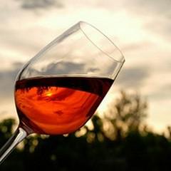 «Top Wine Destination 2013»: la Puglia fa il pieno di consensi