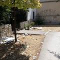 Via della Pineta: aiuole invase dai rifiuti da ben 3 settimane