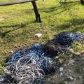 Il volto sporco di Andria: incuria e degrado in zona Sgarantiello