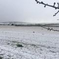 Gelo dalla Siberia, neve a Castel del Monte ad Andria