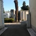 Cercasi interventi di manutenzione e di salvaguardia del verde cimiteriale