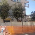 Crollo via Pisani, la Procura di Trani apre un'inchiesta