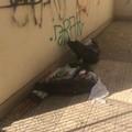 """""""Resti """" di un'artista abbandonati in una galleria di via Trani, residenti indignati"""