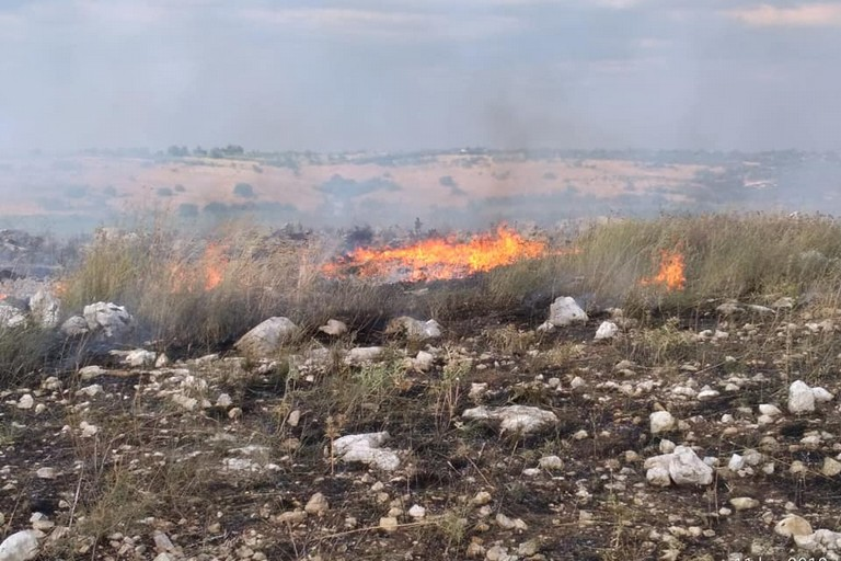 incendio contrada Bosco Santo Spirito