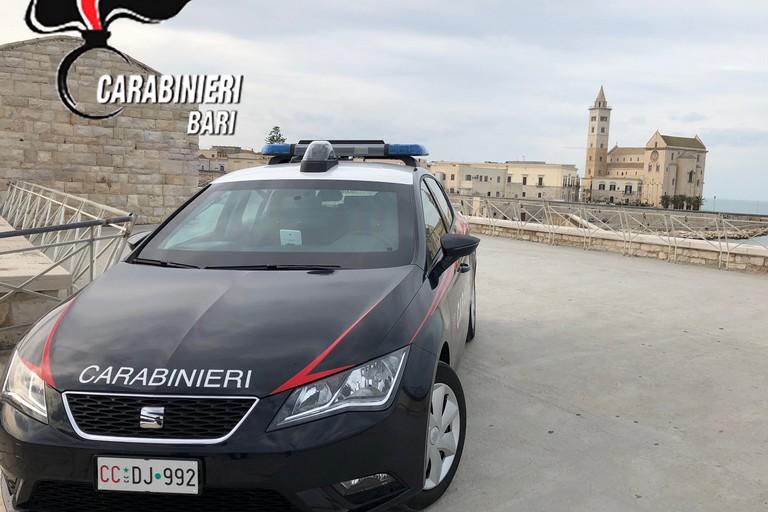 Operazione antidroga dei Carabinieri: sgominato clan criminale nel nord barese