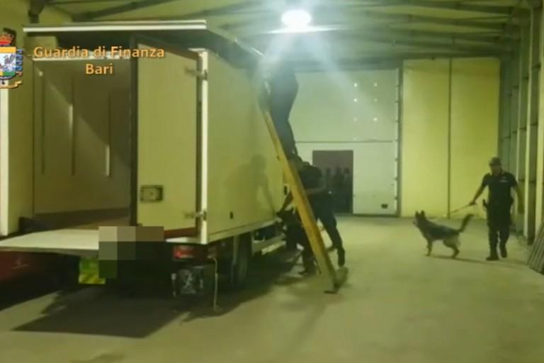 Sequestrati oltre 50 kg di cocaina e marijuana diretti ad Andria, arrestato il responsabile