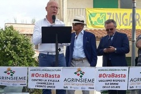 Tommaso Battista