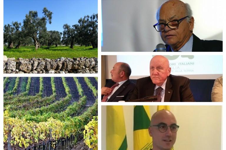 rappresentanti delle Organizzazioni agricole pugliesi