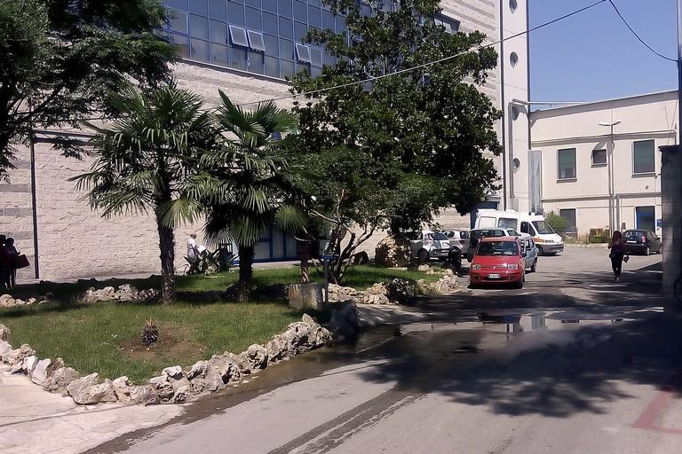 La sanità di Emiliano in commissione Bilancio, si parla dell'ospedale di Andria
