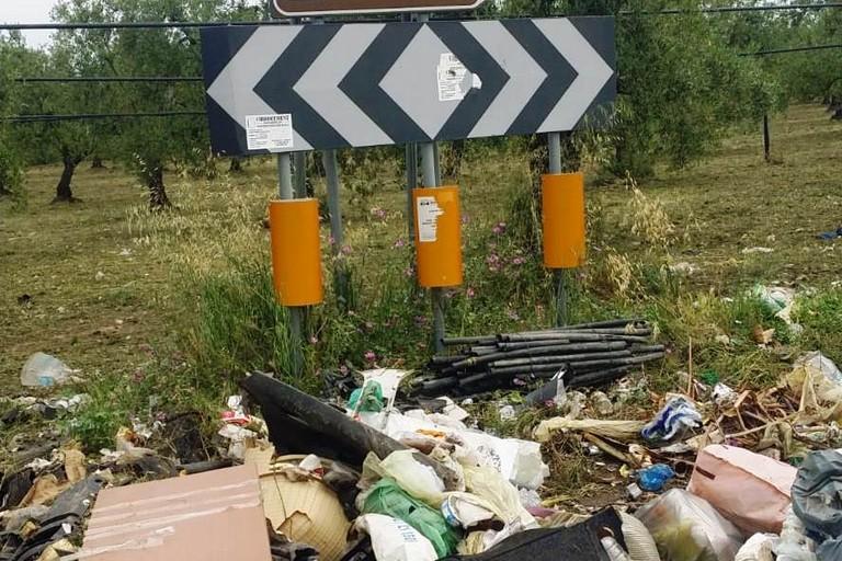 rifiuti abbandonati nelle campagne