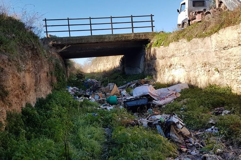 Rifiuti nel canale Ciappetta-Camaggio