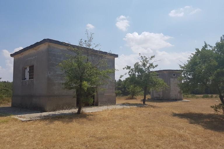 Bosco di Finizio