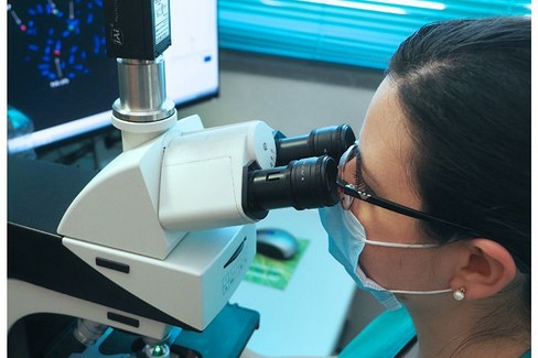 microscopio ricerca sanitaria