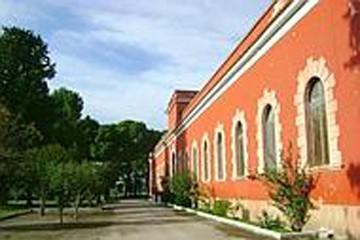 Azienda Papparicotta Andria