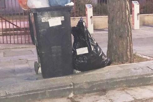 raccolta rifiuti