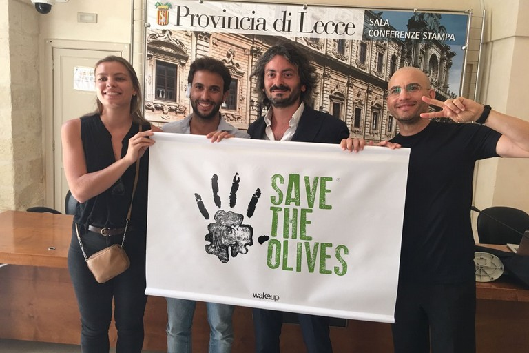 Save the olives