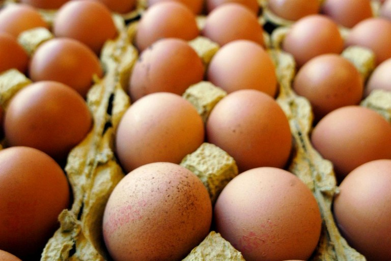 Uova al Fipronil: positivo test nelle Marche. Sequestri in Toscana