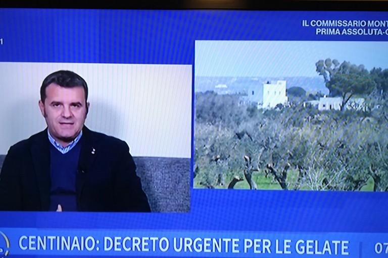 Ministro Centinaio ad UnoMattina su gelate in Puglia